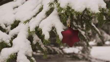 bombki : Christmas Star shaped Decoration hanging on snowy fir tree 4K Wideo