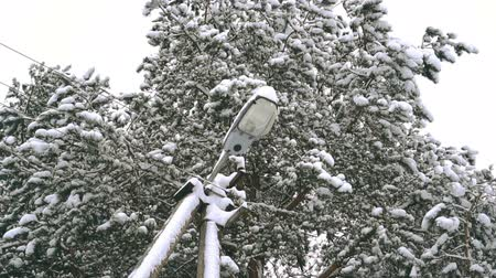 lamppost : Snow falling on a lamp post, slow motion HD