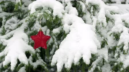 christmas tree decoration : Snow falling on fir tree with red Christmas star