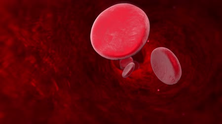 factor : Blood cell (veins, arteries, capillaries). Available in high-resolution and several sizes to fit the needs of your project. 3D animation.