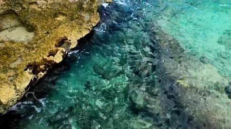 korál : Vivid clear water calmly crashing on coral reef rocky shore