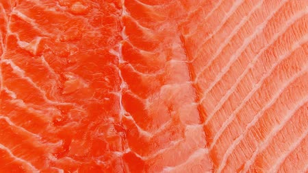 orange background : piece of big salmon fillet over white