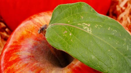 macro fotografia : red fresh ripe twins apple packed with wooden box 1920x1080 intro motion slow hidef hd