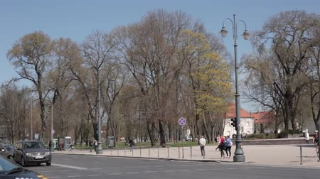 torre sineira : Vilnius, Lithuania. Cathedral Square Near Cathedral Basilica Of St. Stanislaus And St. Vladislav With The Bell Tower In Spring Day Stock Footage