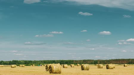 szénaboglya : Rural Landscape Field Meadow With Hay Bales After Harvest. Time Lapse, Timelapse, Time-lapse Stock mozgókép