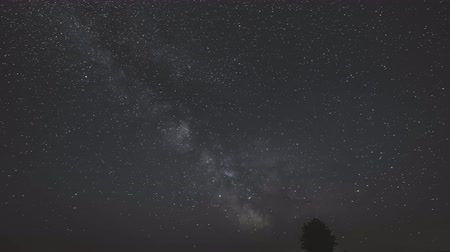 ethereal : Milky Way Galaxy In Night Starry Sky Above Lonely Tree In Summer Meadow. Glowing Stars And Meteorite Trails Above Landscape. View From Europe Stock Footage