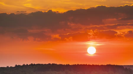 bělorusko : Sunrise Over Forest Landscape. Scenic View Of Morning Sky With Rising Sun Above Forest. Early Summer Nature Of Europe. Time Lapse, Timelapse, Time-lapse