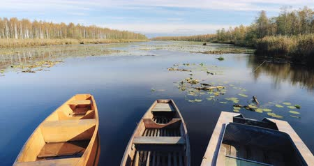 rowboat : Old Wooden Rowing Fishing Boats Moored Near Lake Or River Coast In Beautiful Autumn Sunny Day Stock Footage