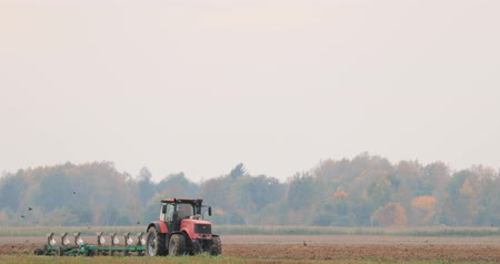 agrarian : Tractor Plowing Field In Autumn Season