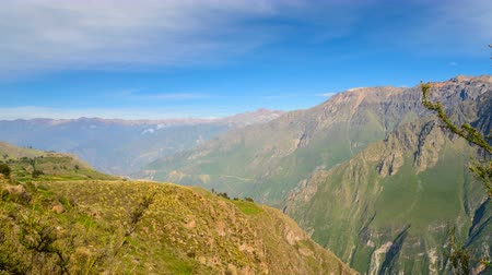 Condor Viewpoint in Colca Canyon