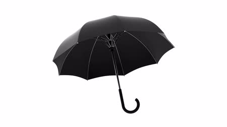 axle : Rotating black umbrella on a white background. Animation with alpha channel Stock Footage