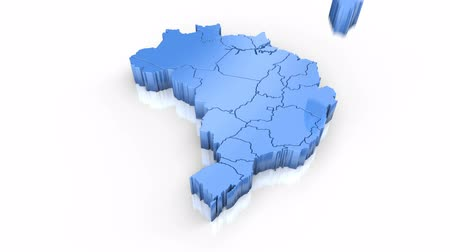 Map of Brazil blue. Formed by individual states falling from top to bottom on white. Animation with alpha channel Stock mozgókép