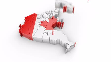 Map of Canada with flag. Formed by individual states, falling from top to bottom on white. Alpha Animation Stok Video