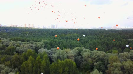 Flying Balloons Above The Trees