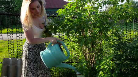 Young woman watering a summer garden. Green threes in village, care for nature Stock mozgókép