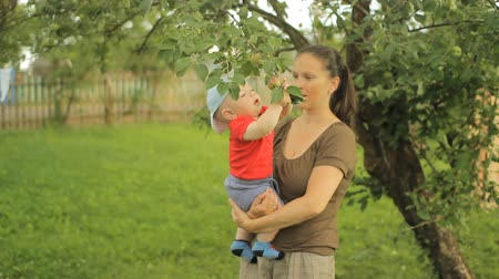 nanny holding : Little baby boy with her young mother play with apple tree Stock Footage