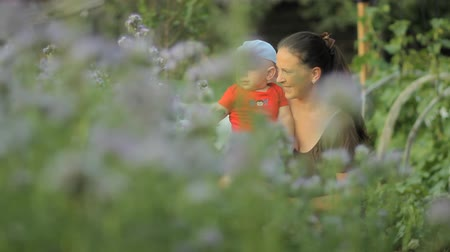 lupine : Young mother holding her newborn baby in a purple flower field Stock Footage