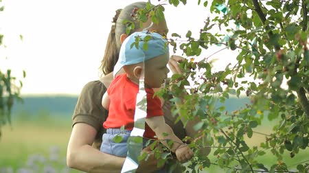 nanny holding : Mother and young son eat berries from the tree. Beautiful baby less than a year Stock Footage
