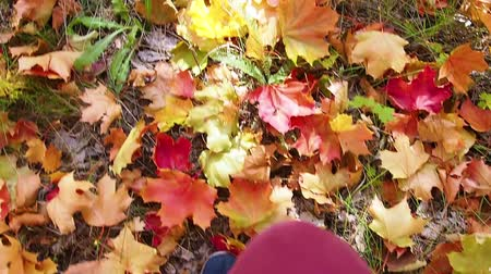 A woman in blue sneakers walks in the Park. Beautiful autumn landscape with colorful foliage. Autumn season. Stok Video