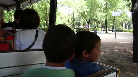 vezetett : Kids o an open small train Stock mozgókép