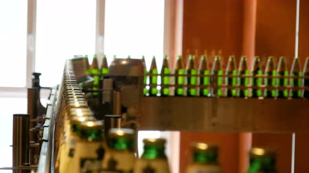 enterprise : Large number of glass bottles with beer are moving along the conveyor. Low alcohol production. Drinks are ready to eat. Factory equipment at work. The finished product moves to another stage. Factory automation. Replacement of human labor with mechanical  Stock Footage