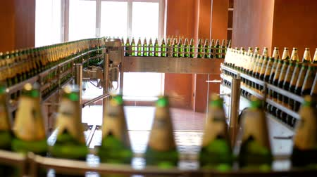technological process : Large number of glass bottles with beer are moving along the conveyor. Low alcohol production. Drinks are ready to eat. Factory equipment at work. The finished product moves to another stage. Factory automation. Replacement of human labor with mechanical  Stock Footage