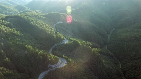 asphalt road : Aerial view of curvy road and forest. Sunny day.