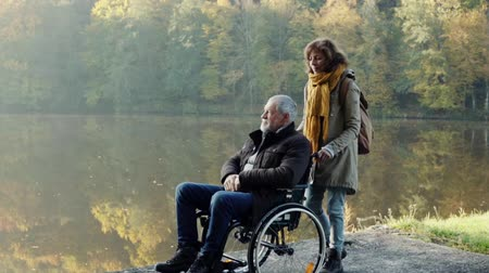 toló : Senior couple with wheelchair in autumn nature.