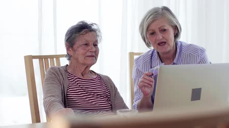 줄무늬가있는 : Senior woman with her mother with laptop at home.