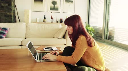 pulóver : Young woman with laptop at home, working.