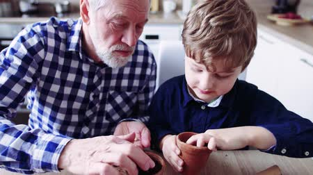 checked pattern : Senior grandfather with small grandson sowing seeds at home.