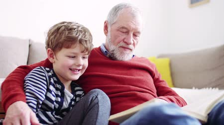 öykü : Senior grandfather with a small grandson at home reading a book. Stok Video