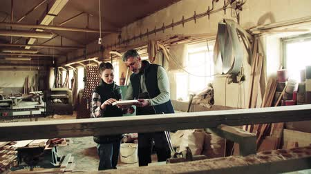 artesão : Man and woman workers in the carpentry workshop holding wood. Vídeos