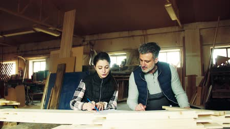 plano : Man and woman workers in the carpentry workshop, making plans.