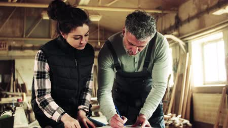 dungarees : Man and woman workers in the carpentry workshop., planning. Stock Footage