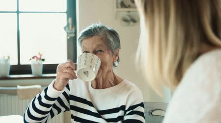 caneca : Elderly grandmother with an adult granddaughter drinking coffee and talking.