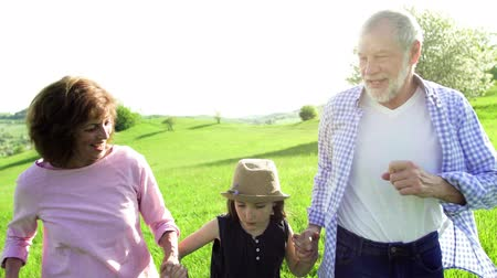 grandad : Senior couple with granddaughter outside in spring nature, walking.