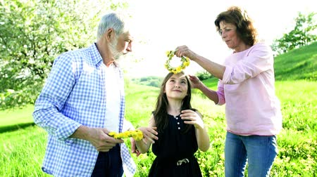 бабушка : Senior couple putting on granddaughters head a dandelion wreath outside in nature. Стоковые видеозаписи
