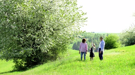 grandad : Senior couple with granddaughter on a walk outside in spring nature. Stock Footage