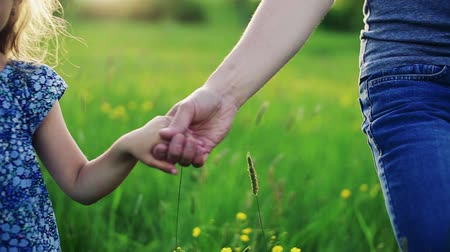 grass flowers : Father with a small daughter on a walk in spring nature at sunset. Stock Footage