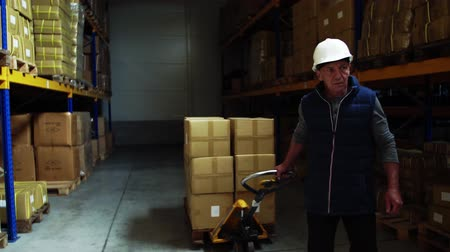 отправка : Senior male warehouse worker pulling a pallet truck. Стоковые видеозаписи