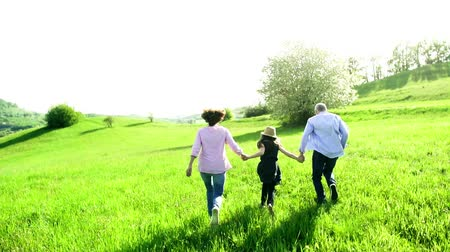 grandad : Senior couple with granddaughter outside in spring nature, running. Stock Footage