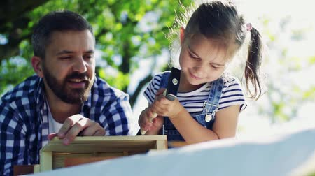 feeder : Father with a small daughter outside, making wooden birdhouse. Stock Footage