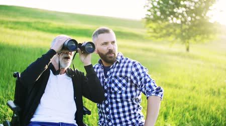 checked pattern : A hipster son and senior father in wheelchair using binoculars in sunny nature. Stock Footage