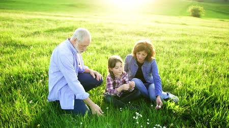 grandad : Senior couple with granddaughter sitting on grass outside in nature at sunset.