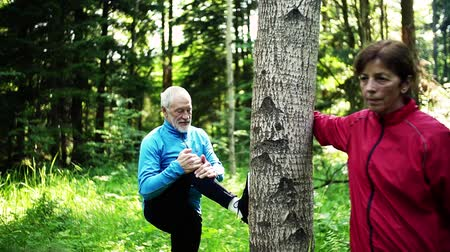 recreational pursuit : Senior sporty couple stretching in the forest outdoors in sunny nature.