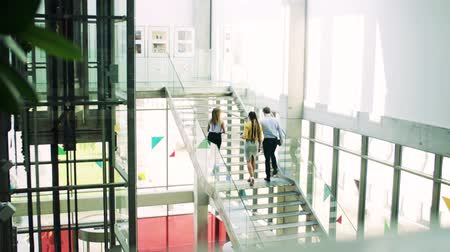 fonat : A group of businesspeople walking up the stairs in the modern building, talking.