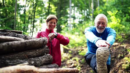 cross training : Senior sporty couple stretching in the forest outdoors in sunny nature.