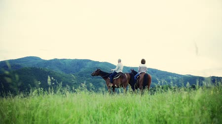 konie : A rear view of senior couple sitting on horses on a meadow, talking.