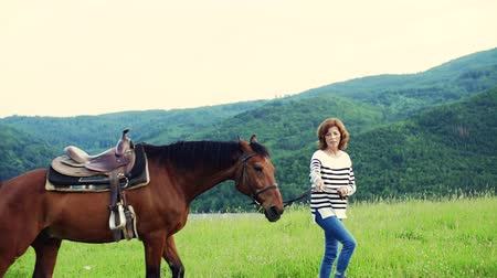 konie : A senior woman holding a horse grazing on a pasture.